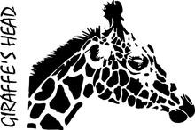 Silhouette Of Giraffe