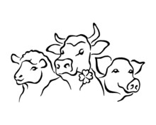 Domestic Animals, Sheep, Cow, Pig, Set Of Black And White Icons