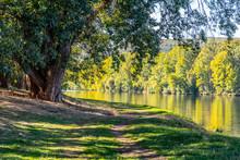 Riverside Path On Sunny Summer Day. Calm Labe River Near Litomerice, Czech Republic
