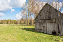Old Weathered Shed In The Meadow