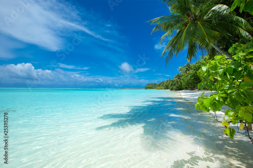 Maldives island with white sandy beach and sea Canvas Print