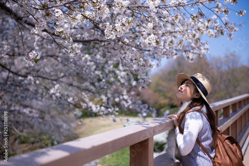 Foto  Beautiful young Asian woman is enjoy traveling during spring in Japan and looking at Cherry Blossom