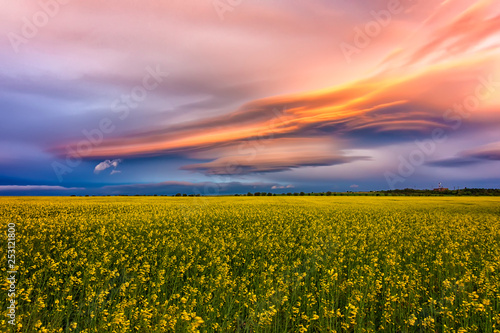 La pose en embrasure Rose clair / pale Amazing colorful clouds over the field with yellow rape