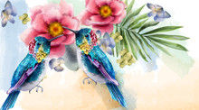 Colorful Humming Birds And Flo...