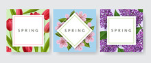 Spring Card Frame Set With Red Tulip, Pink Cherry Flower And Purple Lilac. Vector Illustration With Spring Design Template For Easter Or Nature
