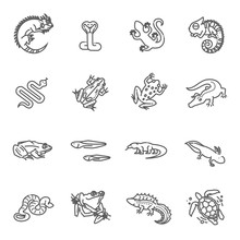 Reptiles And Amphibians Icons ...