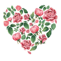 Fototapeta Kwiaty Heart shaped form filled with pink blooming roses, isolated on white, hand drawn botanical illustration.