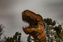 Head Of A Tyrannosauruses Rex ...