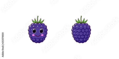 Fényképezés  Cute Kawaii Blackberry, Cartoon Ripe Fruit. Vector
