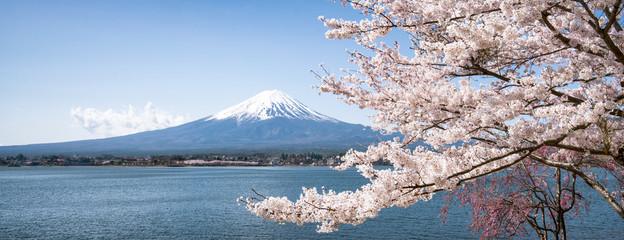 Góra Fuji do Sakury wiosną, Kawaguchiko, prefektura Yamanashi, Japonia