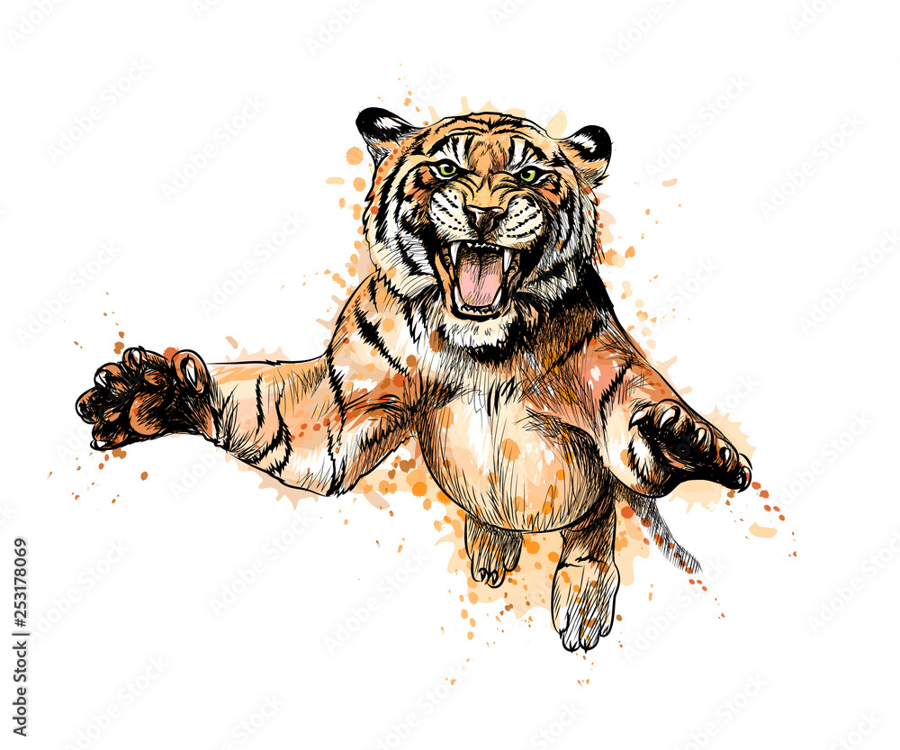 Fototapeta Portrait of a tiger jumping from a splash of watercolor