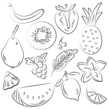 Hand Drawn Set Of Fruits In Sketch Style.  Vector Illustration Isolated On White Background. Healthy Food.