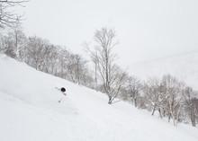 Deep Powder Skiing In Niseko, Japan.