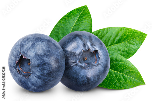 Vászonkép Blueberry isolated Clipping Path