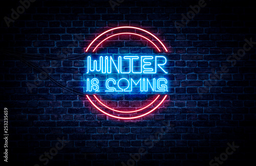 A neon sign in blue and red light on a brick wall background that reads: WINTER Canvas Print