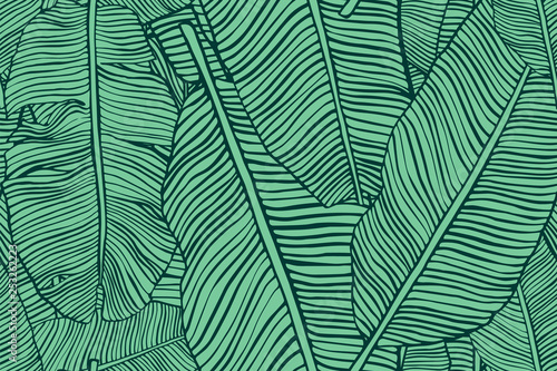 Fototapeten Künstlich Tropical leaves. Seamless texture with banana leaf. Hand drawn tropic foliage. Exotic green background.