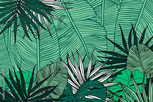 Fotografía Tropical background