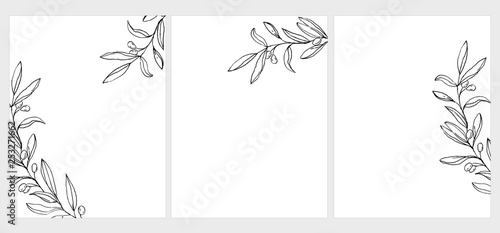 Fototapeta Set of 3 Green Olive Twigs Vector Illustration. Black Olive Branches Isolated on a White Background. Simple Elegant Wedding Cards. Floral Hand Drawn Arts. Illustration Without Text. obraz