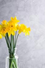 Daffodils, Bouquet, Glass Vase...