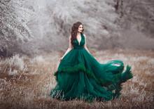 Beautiful Long-haired Girl In ...