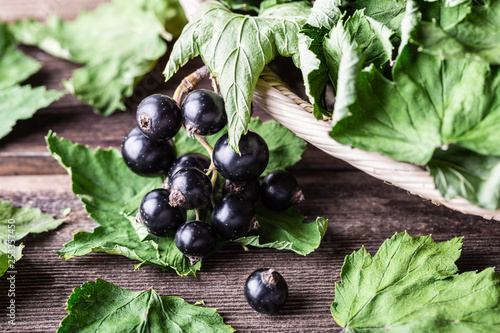 Black currant with green dried leaves on wooden background. Wallpaper Mural
