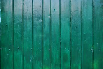 Pared de madera verde