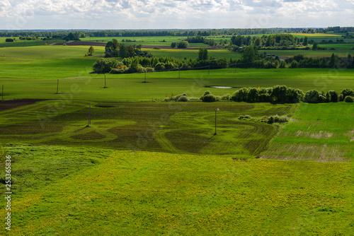 Fotobehang Rijstvelden green cultivated fields in countryside