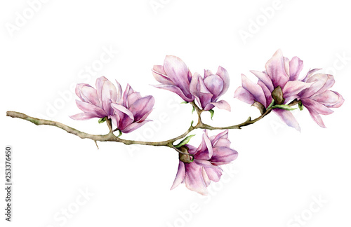 Leinwand Poster Watercolor magnolia and leaves horizontal card