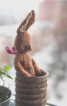 Cute Teddy Bear Toy Sitting On...