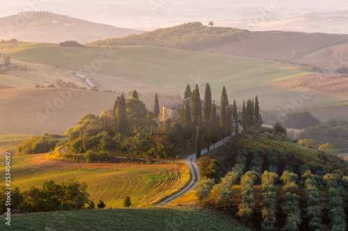 Tuinposter Wijngaard Podere Belvedere in the Val D'orcia Tuscany Italy