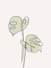Eucalyptus Monstera Leaves Continuous Line Drawing. One Line . Hand-drawn Minimalist Illustration, Vector.