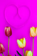 Leinwandbild Motiv Spring flower of multi color Tulips on pink background ,Flat lay image for holiday greeting card for Mother's day,Valentine's day, Woman's day