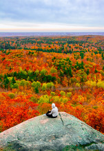 Gatineau Park Forest In Fall