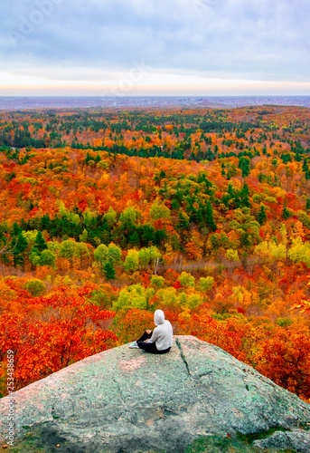 Gatineau Park forest in fall  - 253438659