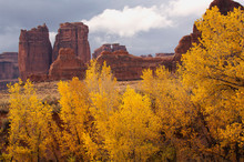 Fall Color & Rock Formations;  Arches National Park;  Utah
