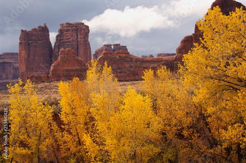 Slika na platnu Fall color & rock formations;  Arches National Park;  Utah