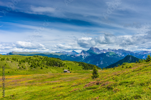 Fototapeta Alpe di Siusi, Seiser Alm with Sassolungo Langkofel Dolomite, a large green field with a mountain in the background obraz na płótnie
