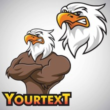 Eagle Mascot Vector Character ...