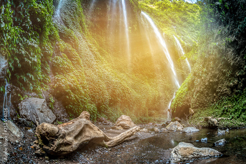Majestic Madakaripura Waterfall flowing in rocky valley, Tallest waterfall in Deep Forest in East Java, Indonesia. - 253454026