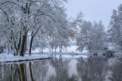 Photo Stands Dark grey Frozen Lake Reflection in French Countryside during Christmas Season / Winter