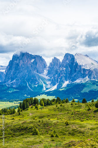 Cadres-photo bureau Alpes Alpe di Siusi, Seiser Alm with Sassolungo Langkofel Dolomite, a field with a mountain in the background