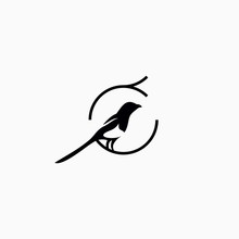 Simple Magpie Bird Logo Vector Illustration