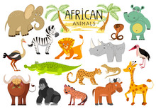 African Animals Collection Iso...