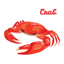 Red Crab Vector Illustration I...