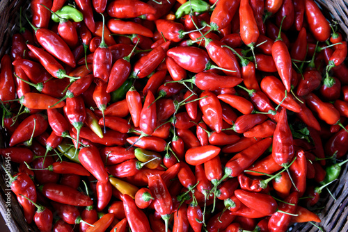 Fotografie, Obraz  Freshly harvested ripe red hot chili peppers in a farmers market in Colombia, South America