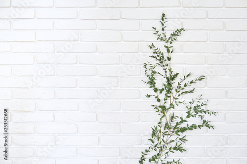 Photo sur Toile Brick wall Eucalypt branch on white brick wall background. Home decor branch of eucalyptus attached to a brick wall.