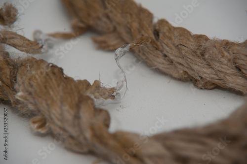 Fototapeta lina połączenie  obraz