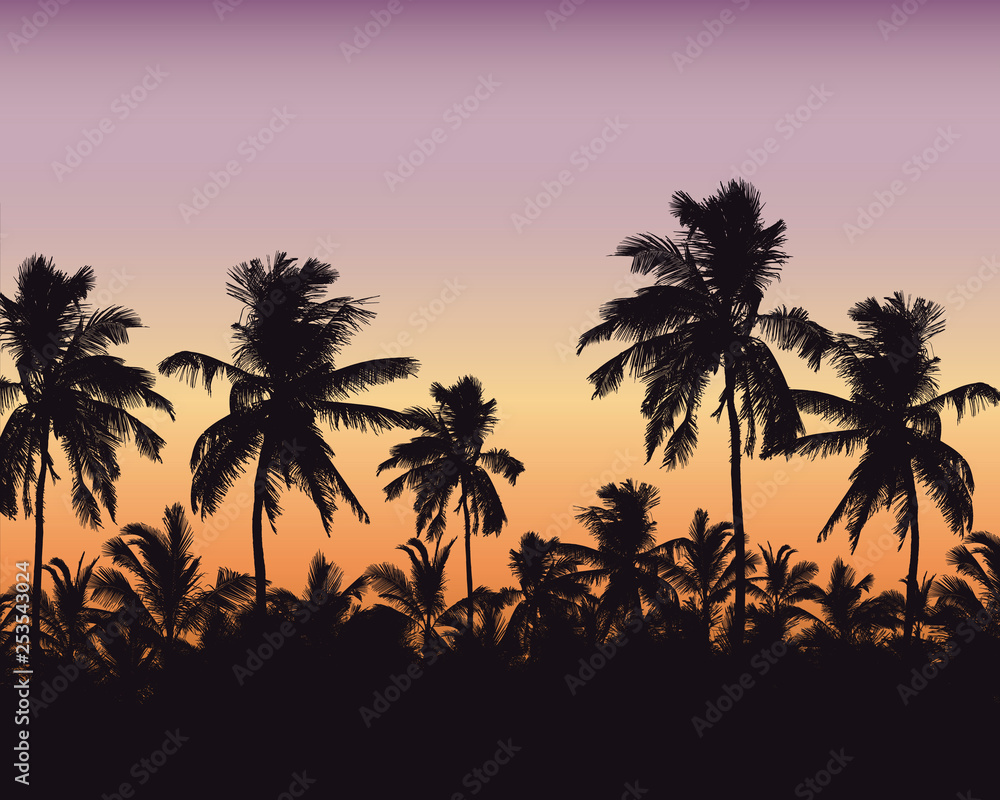 Fototapeta Realistic illustration of a palm forest. Purple orange sky with space for text, vector