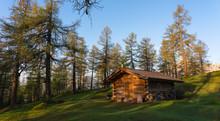 Ferienhaus In Lärchenwald Bei Aufgehender Sonne