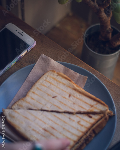 toastie, plant and iPhone at sandwich bar Canvas Print
